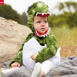 Pottery Barn Baby Green Dinosaur Egg Costume